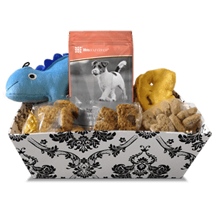 Tasty Treats and Toy Gift Basket for Dogs