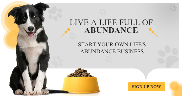Live a life full of abundance by starting your own Life's Abundance Pet Business.  Go into business with your pets and feel rewarded helping dogs and cats.