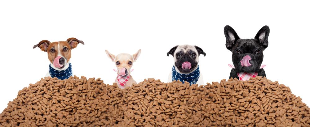 Best Healthy Treats For Dogs Reddit